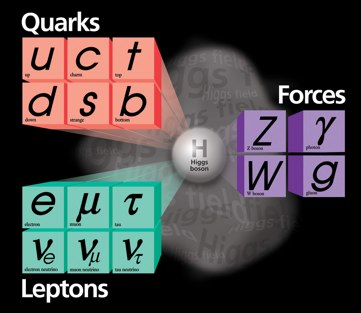 Standard Model of Elementary Particle Physics